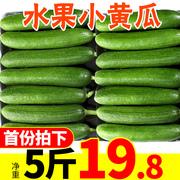 蔬菜水果中哪些能以形补形