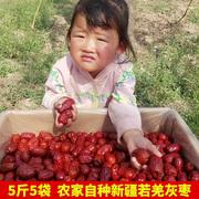 中国红枣十大品牌